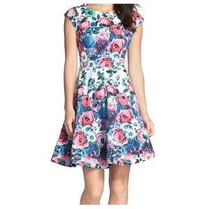 Felicity & Coco Floral Pinup Cocktail Mini Dress L